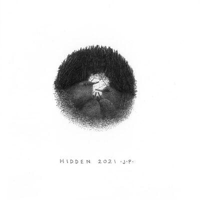 Hidden 2021: third in the Wren series