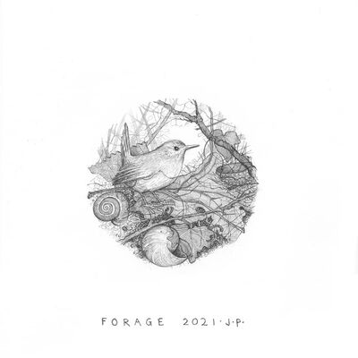 Forage: fourth and final drawing in The Wren series