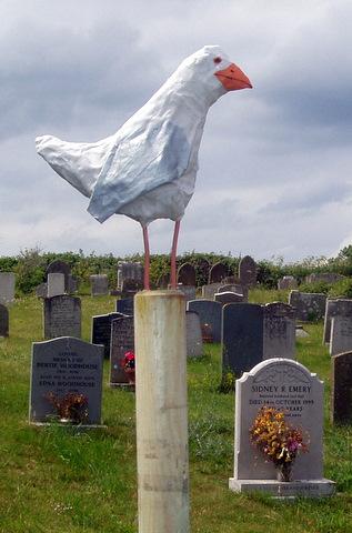 Salthouse 2010 Seabirds Display