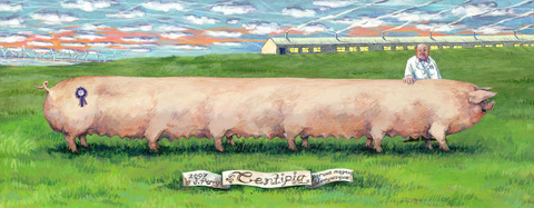 Centipig: Giclee print for sale