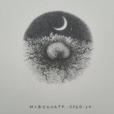 Hedgehog II: Hibernate 2020