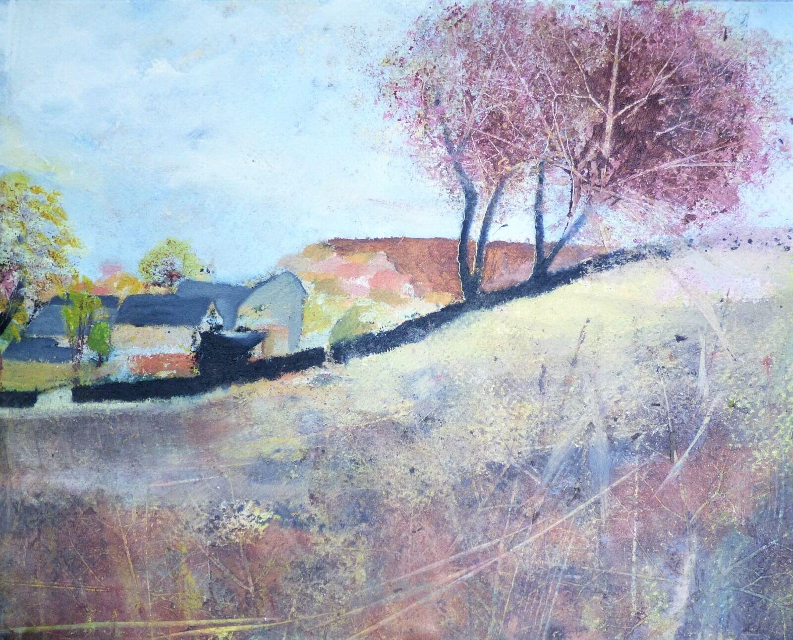 Looking out across fields towards Lee's Moor.