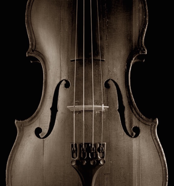 Musical Body
