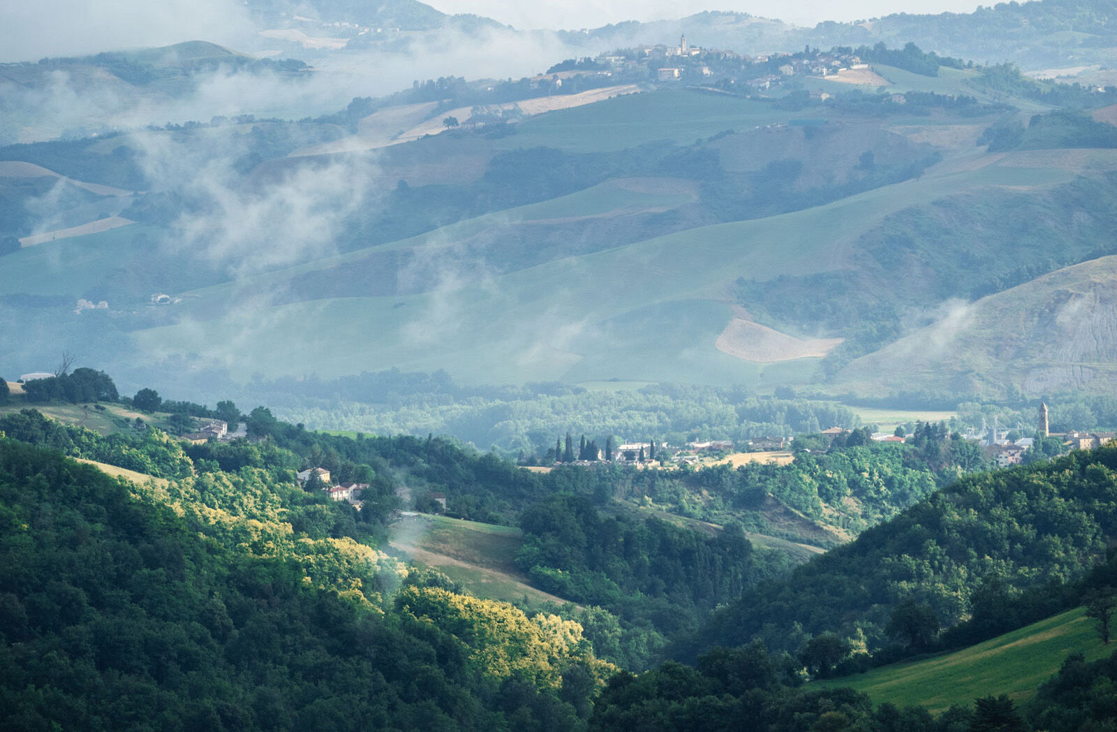 Hills near Urbino