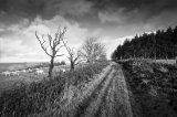 LLan Wen Hill, Radnor