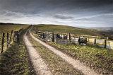 Track & Sheep Pens, Llanfair Hill, Shropshire