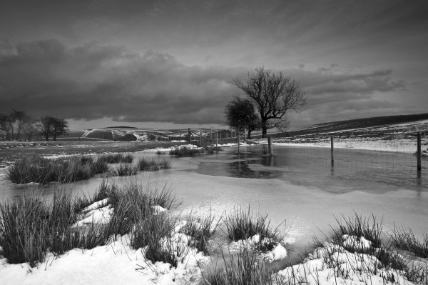 Winter Landscape, Panpwnton Hill, Shropshire