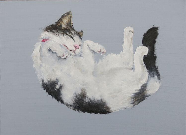 Happy Cat (Gary)