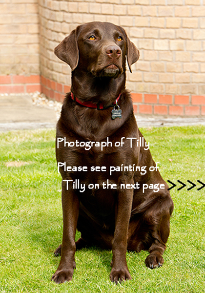 Photograph of Tilly