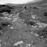 Wandering #4