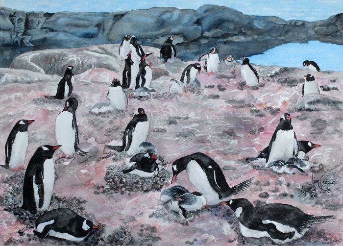 Gentoo penguins at Port Lockroy