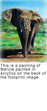 Painting-Marula-with-text