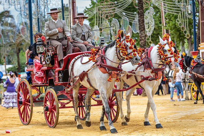 The Jerez Horse Fair