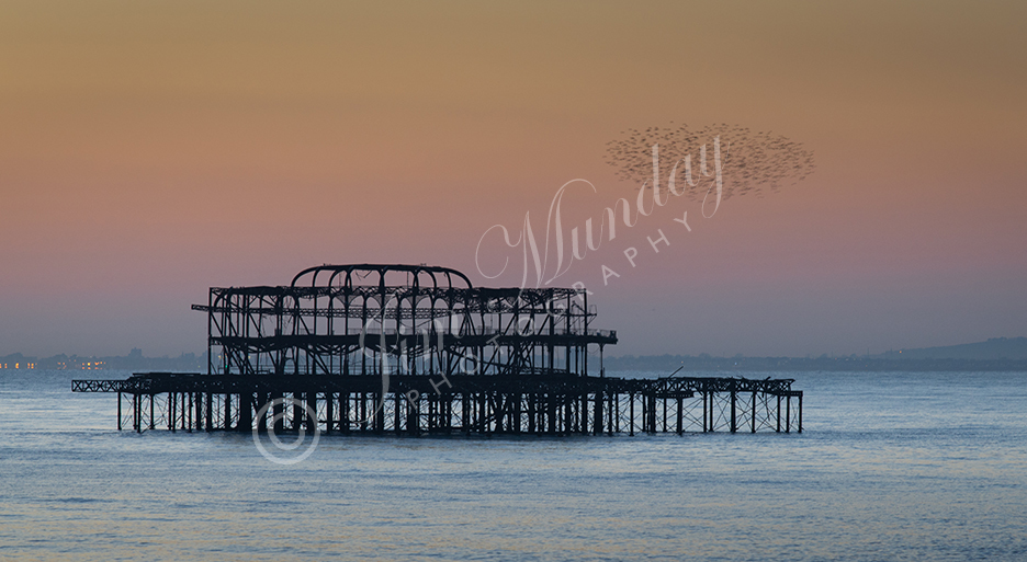 West Pier Murmuration