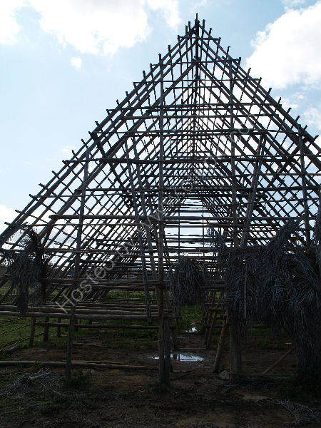 Tobacco shed under construction