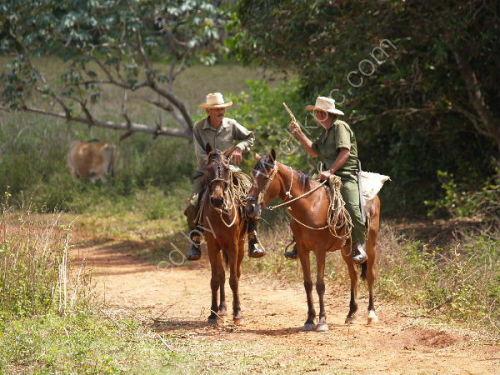 Farmers conversing on horseback