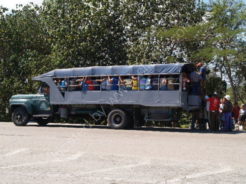 Mass transport system
