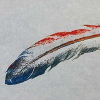 Red & Blue Feather