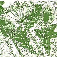 Oakleaves, Teasels & Hogweed