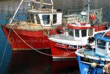 fishing boats at Ullapool, Scotland