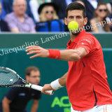 Novak Djokovic 001