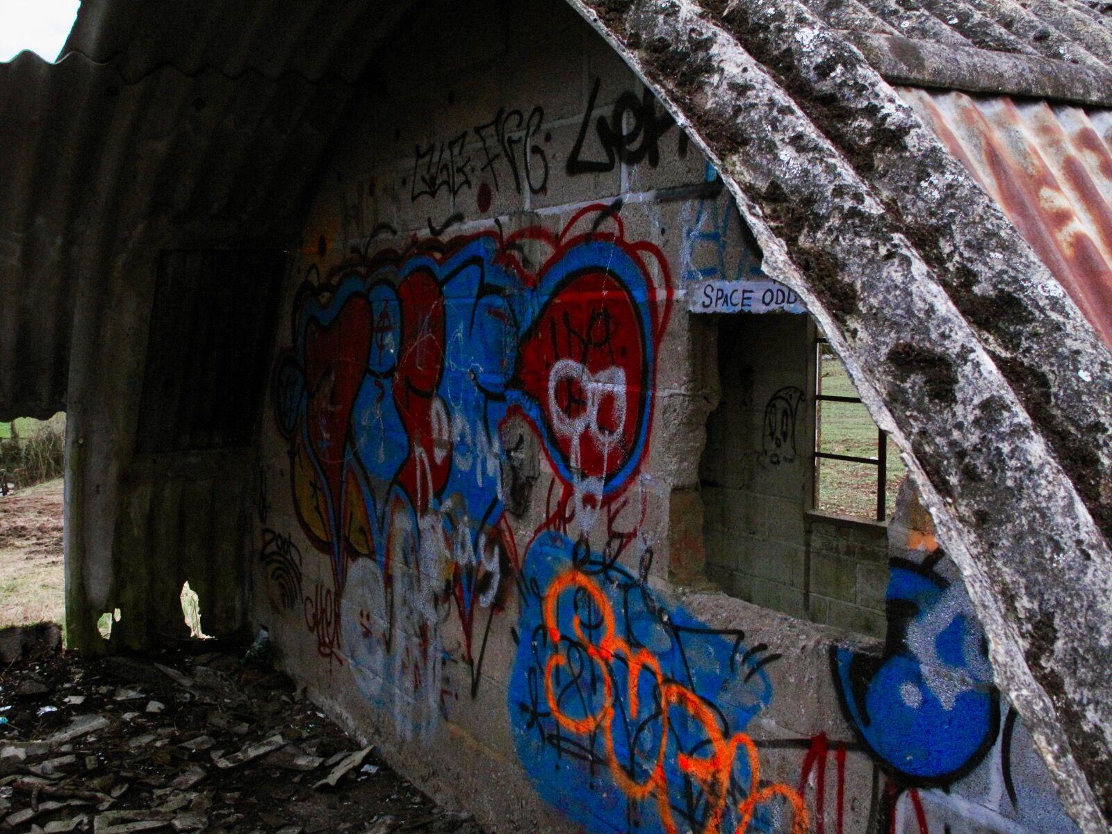 Cowshed Graffiti / 3