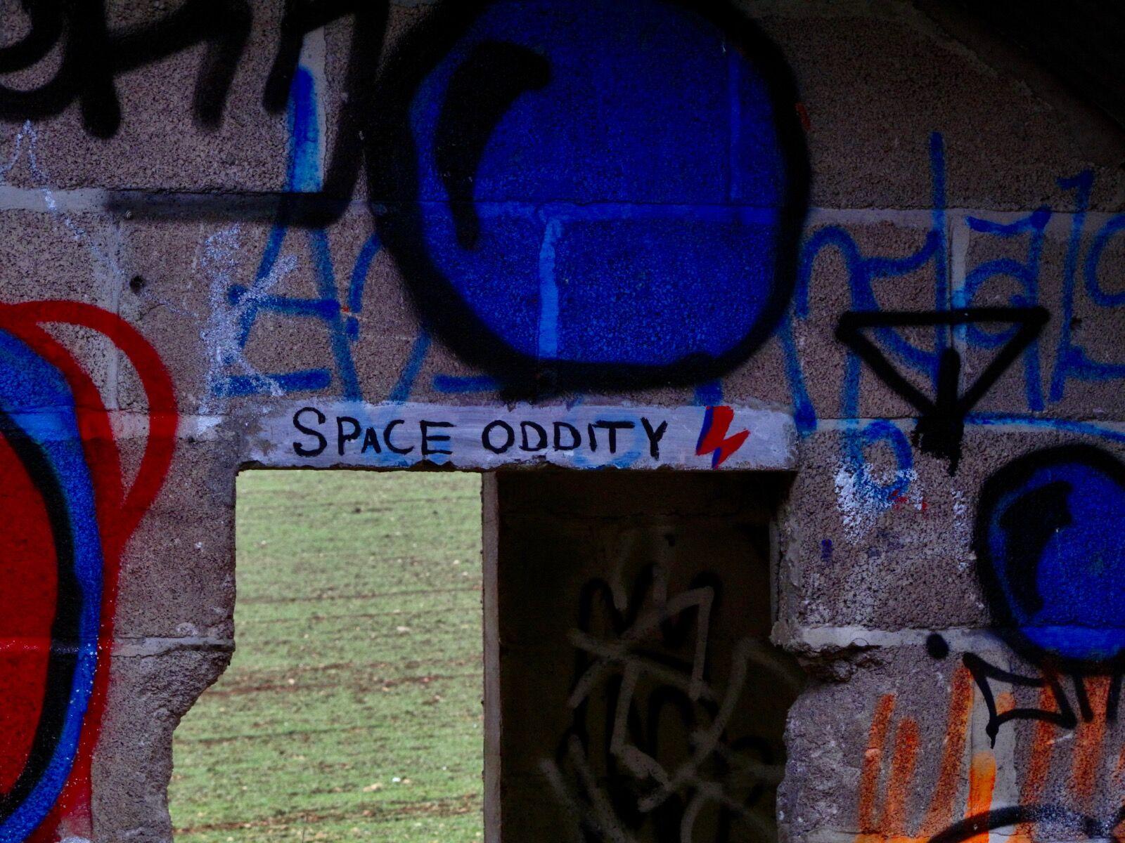 Cowshed Graffiti / 4