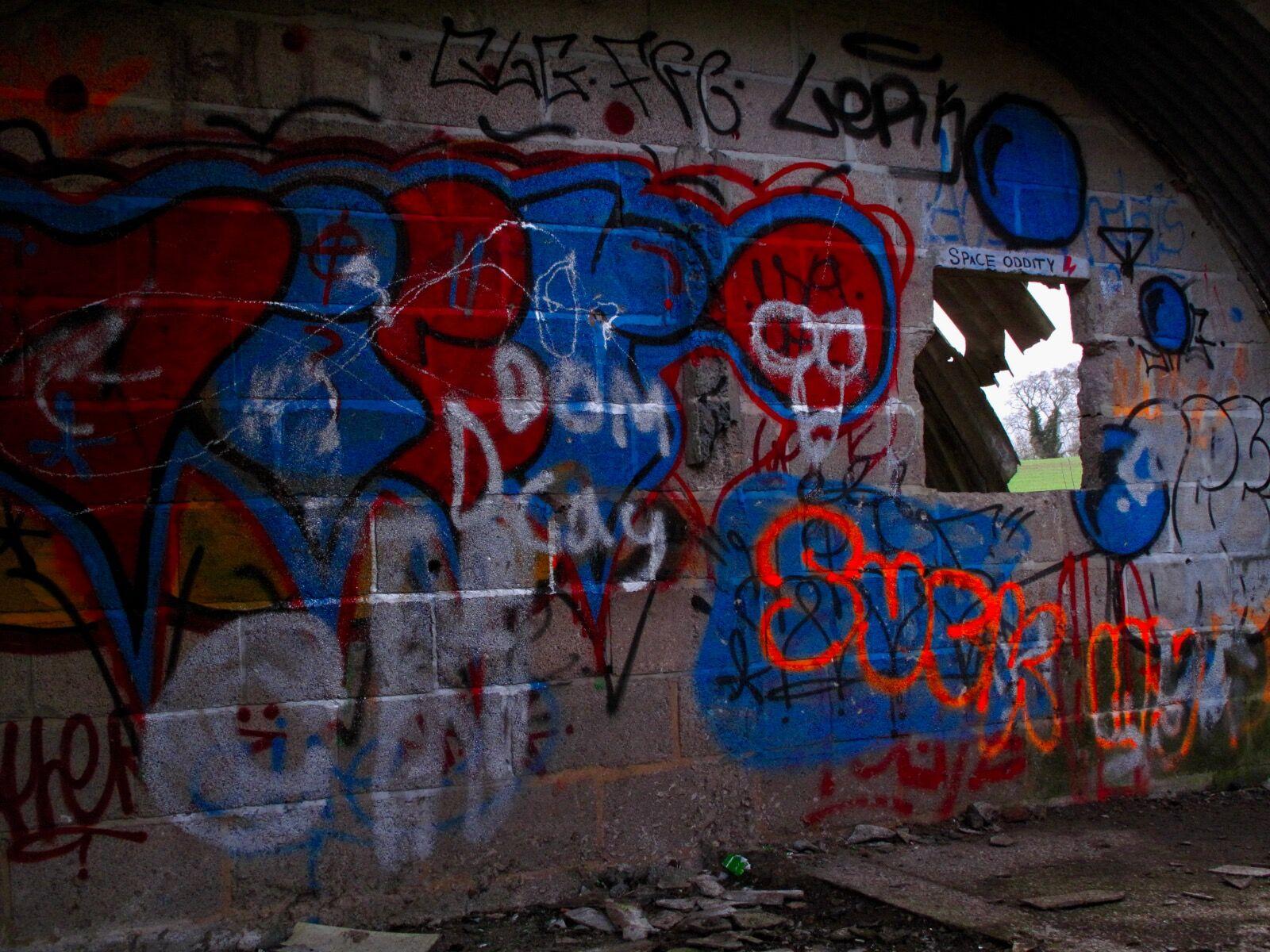 Cowshed Graffiti / 5