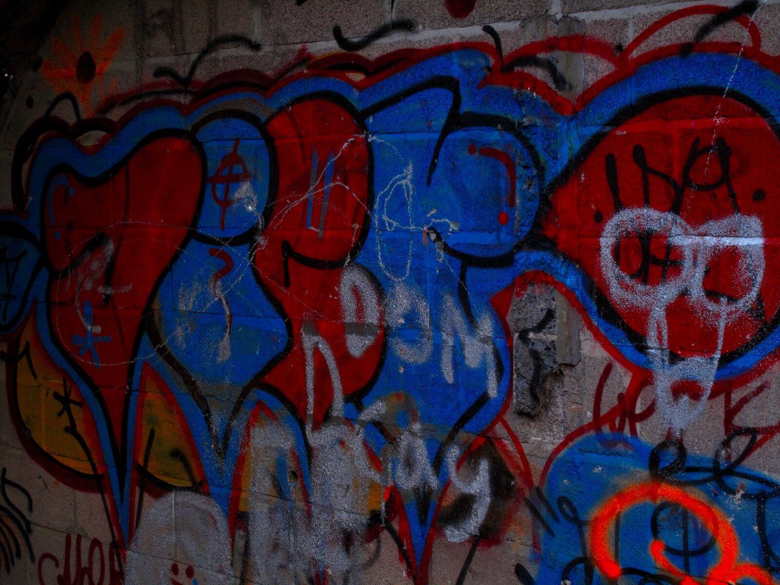Cowshed Graffiti / 6