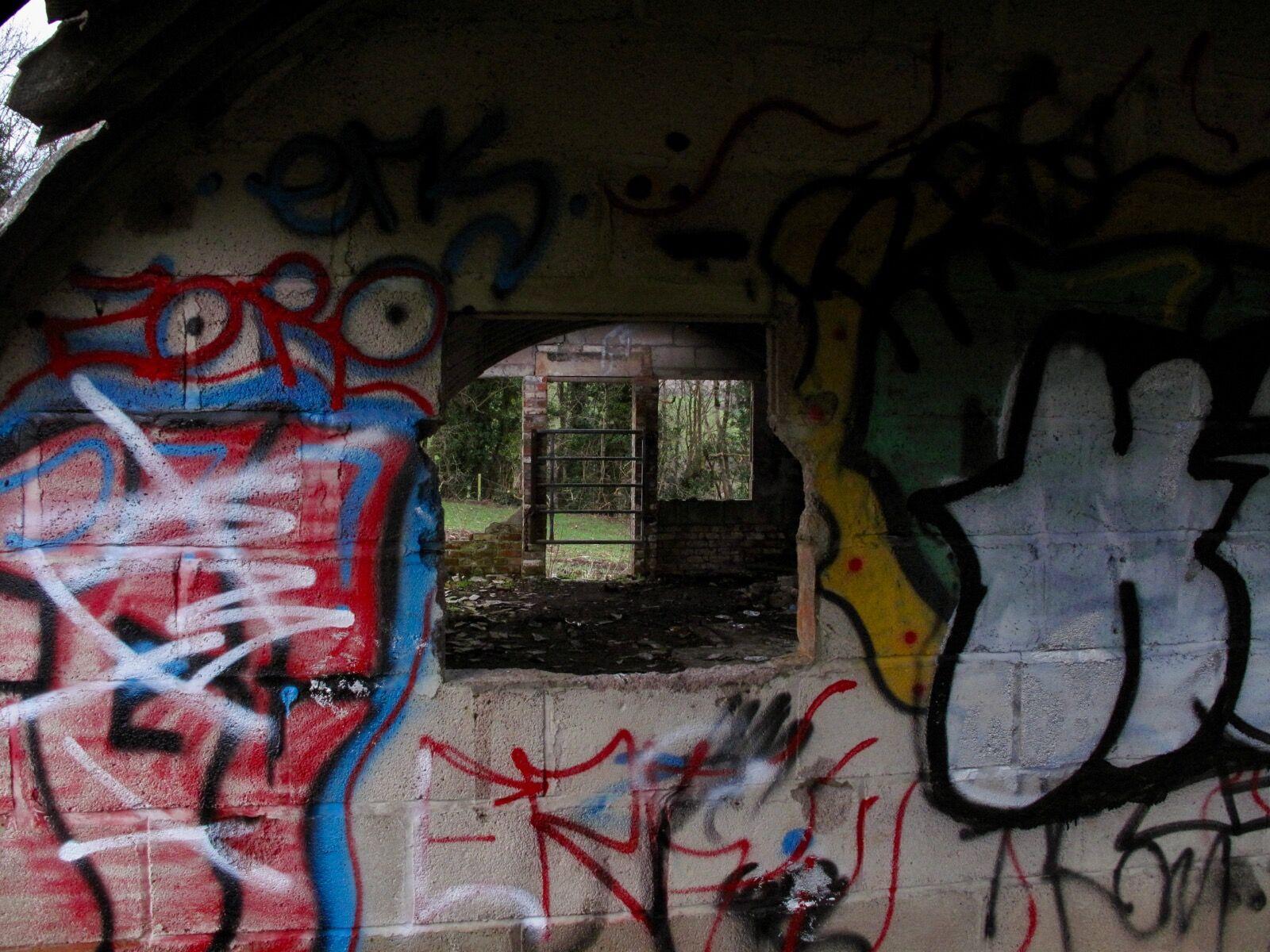 Cowshed Graffiti / 9