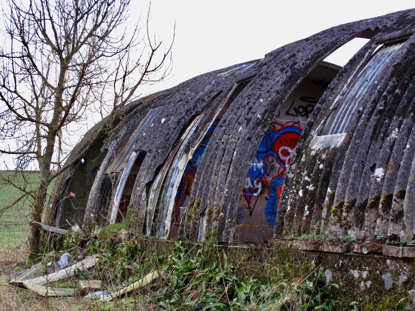 Cowshed Graffiti / 11