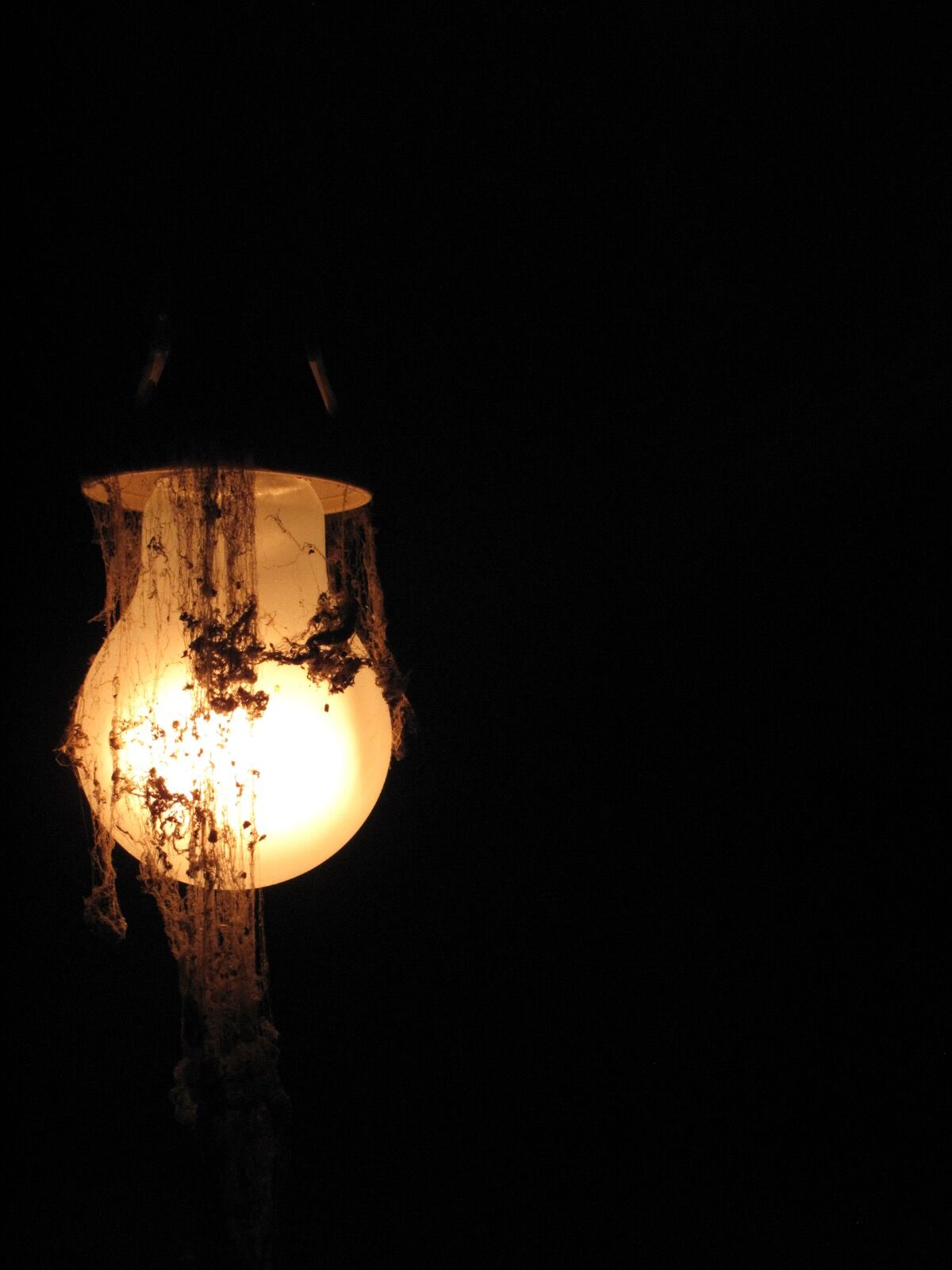 Ghost Lightbulb / 6