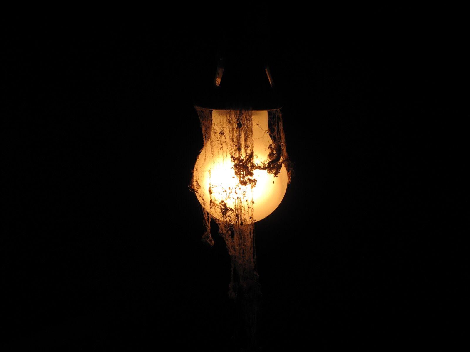 Ghost Lightbulb / 3