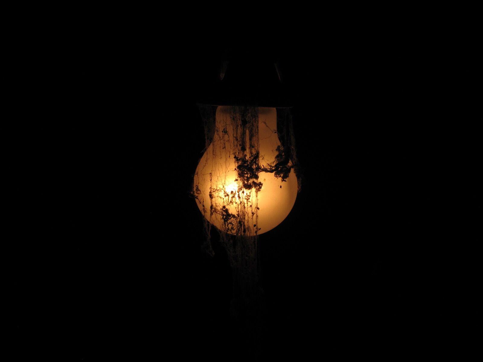 Ghost Lightbulb / 5