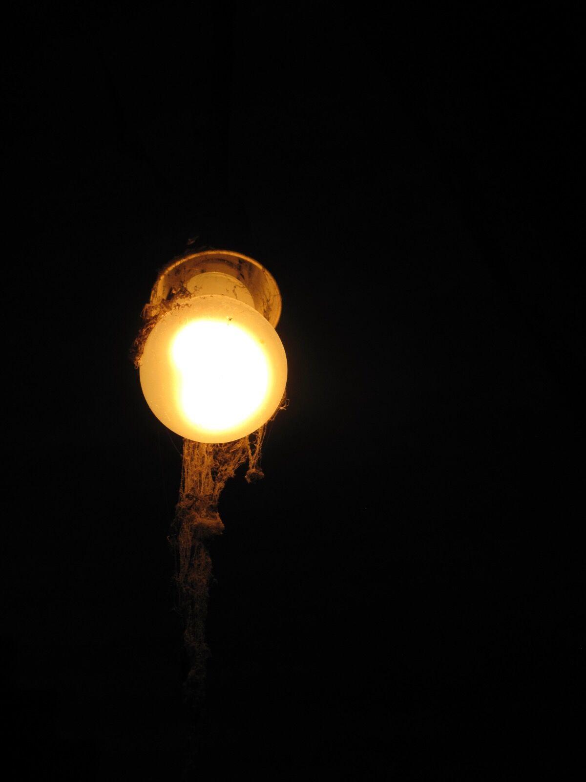 Ghost Lightbulb / 7
