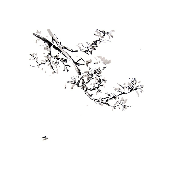blossom and fly