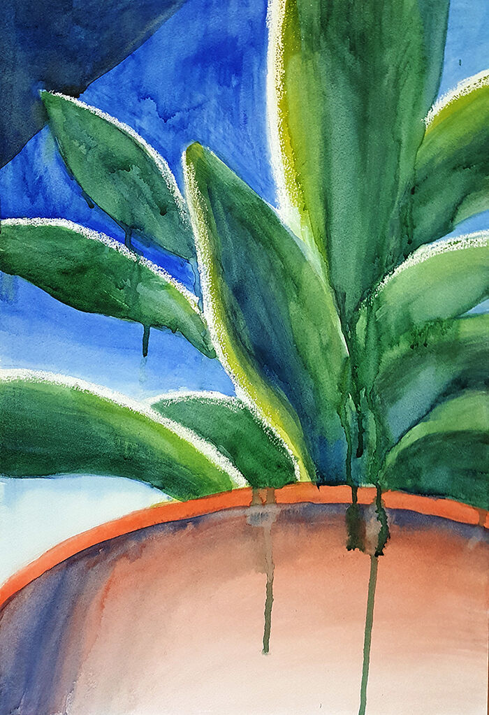 portrait format; a zoomed in view of a succulent plant from a low angle, with vibrant green leaves; drips of paint leak down over the teracotta pot, which complements the vibrant blue background