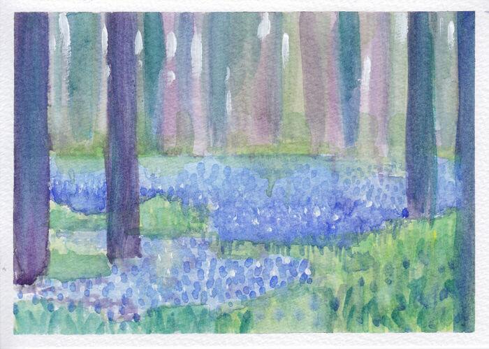 Little Bluebell Wood