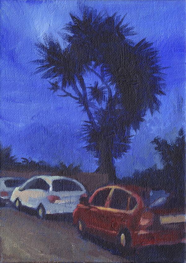 a palm tree is a black silhouette against a deep blue sky. a row of cars, silver and red, are parked underneath it.