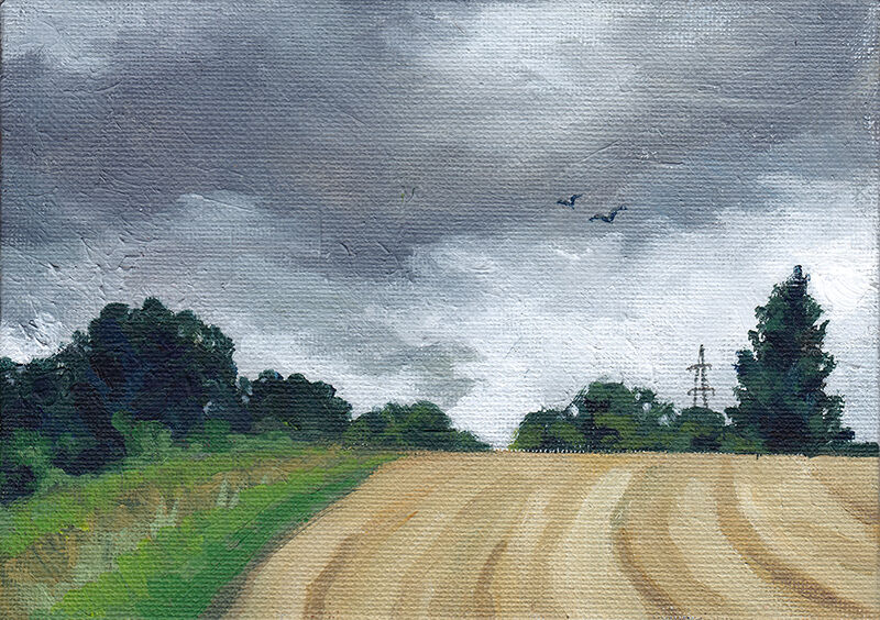 a couple of birds soar through the grey, overcast sky, over a yellowing field. a strip of green grass and dark trees line the edge, and a pylon is visible on the horizon.