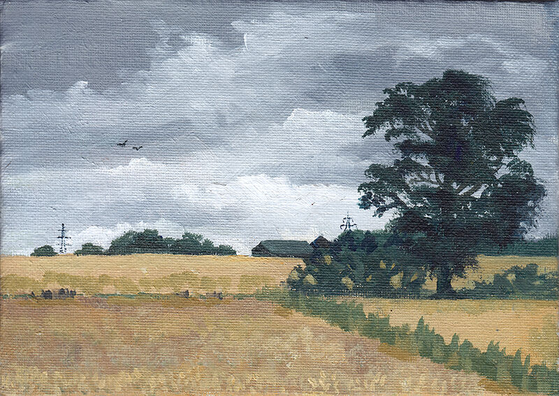 an old tree stands in the middle of a patchwork of yellowing fields, silhouetted against a grey sky. birds are flying overhead, and farm buildings and pylons are visible in the distance.