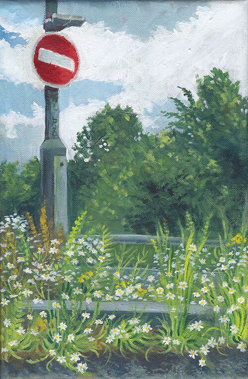 white daisies with bright green leaves grow up along the edge of a motorway, surrounding a road sign.