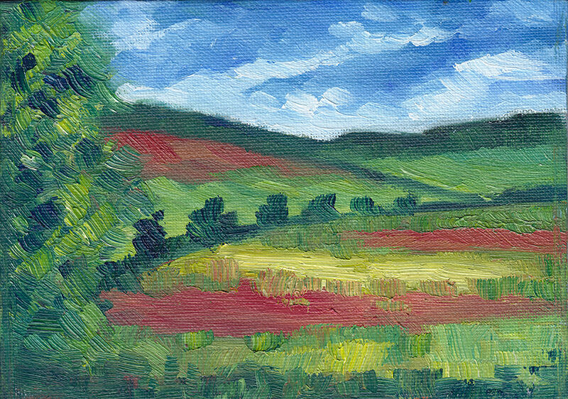 Poppy Fields From The Train