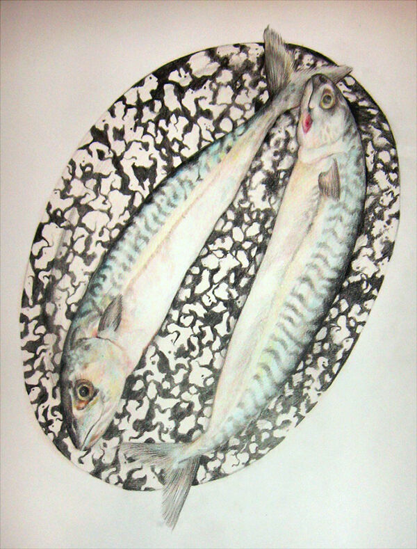 a pencil drawing of two mackerel on a black and white patterned plate