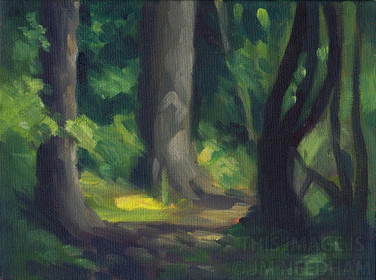 Quiet Woodland Path