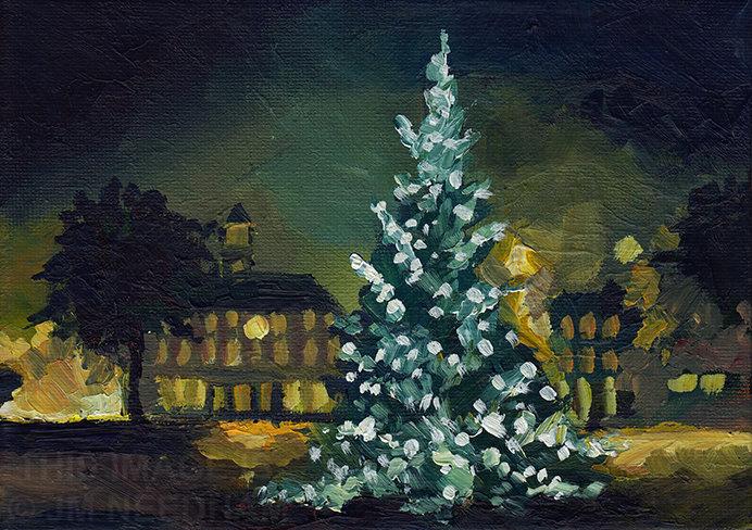 Christmas Tree, Broadway Gardens