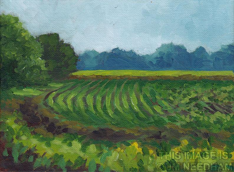 fields near hexton