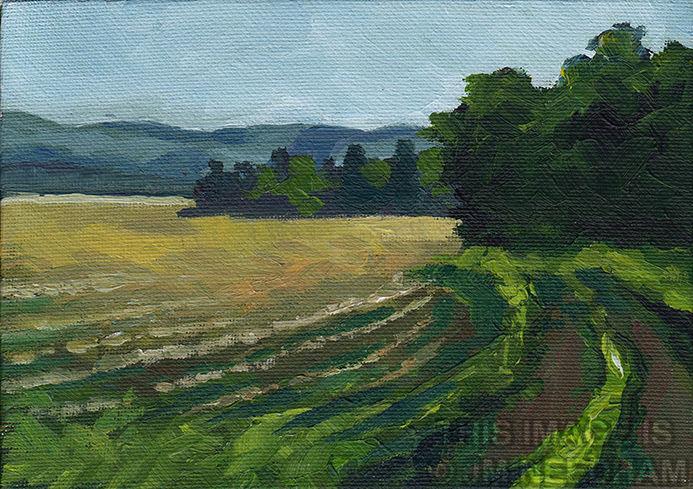 Fields, January Morning