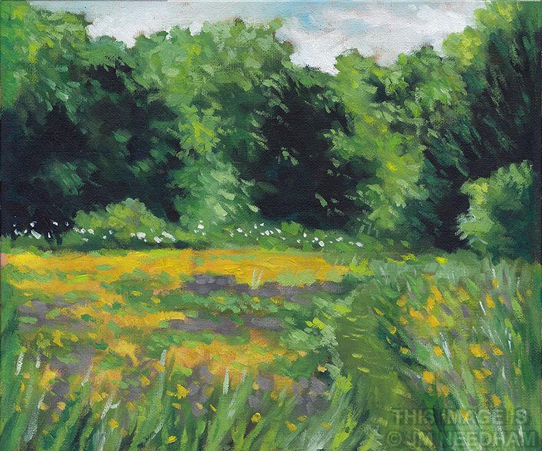 The Meadow, June