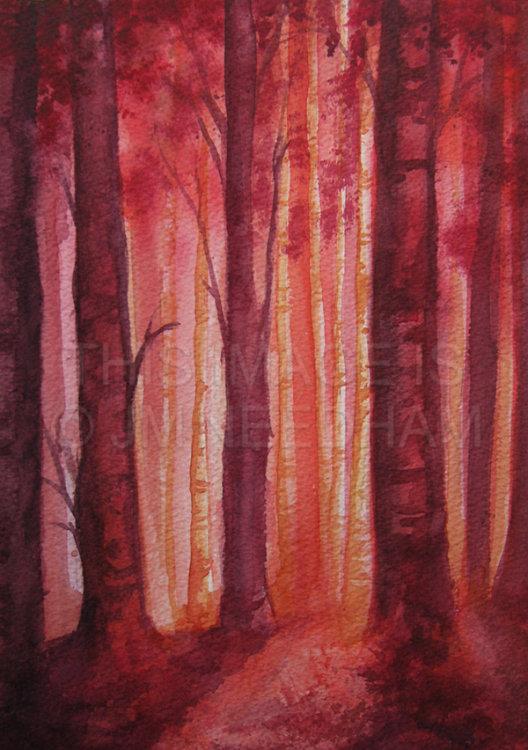 Red Birch Wood